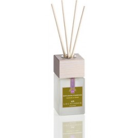 Fragrance Diffuser Rice Germs
