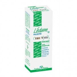 Ledum Palustre The Wall Pocket