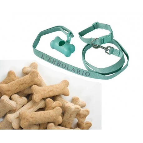 Animals Collar and Biscuits